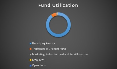 Tripterium T50 Fund Utilization Table